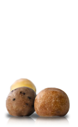 Timbits<sup>MD</sup>